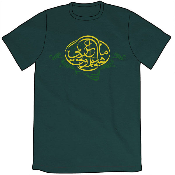 My Parents Never Taught Me Arabic Shirt