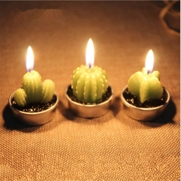 cactus candles party favors