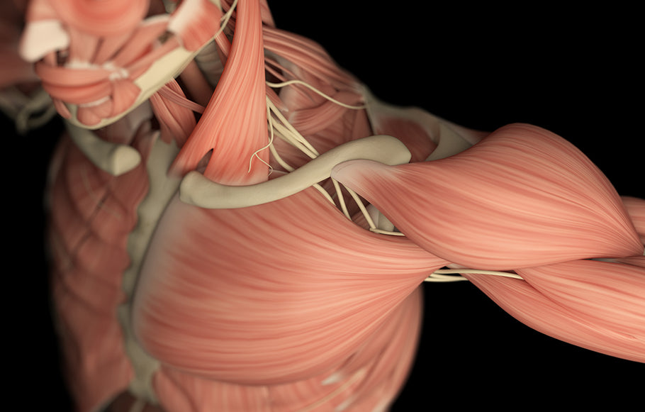 How to Beat Chronic Pain with Fascia Massage. Heal Faster!