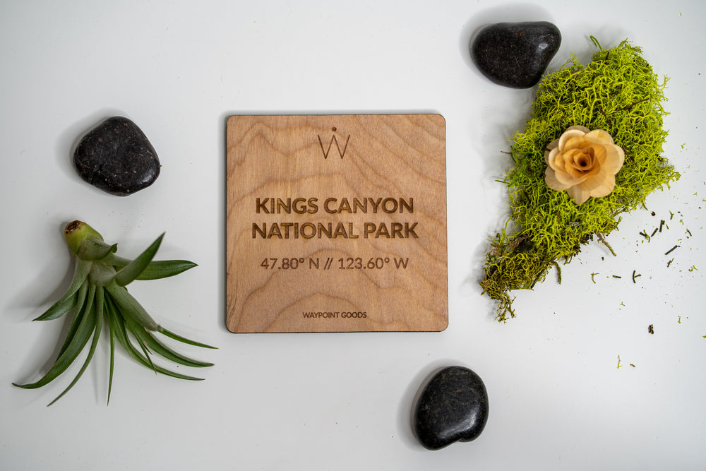 KINGS CANYON National Park Coaster