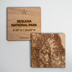 SEQUOIA National Park Coaster