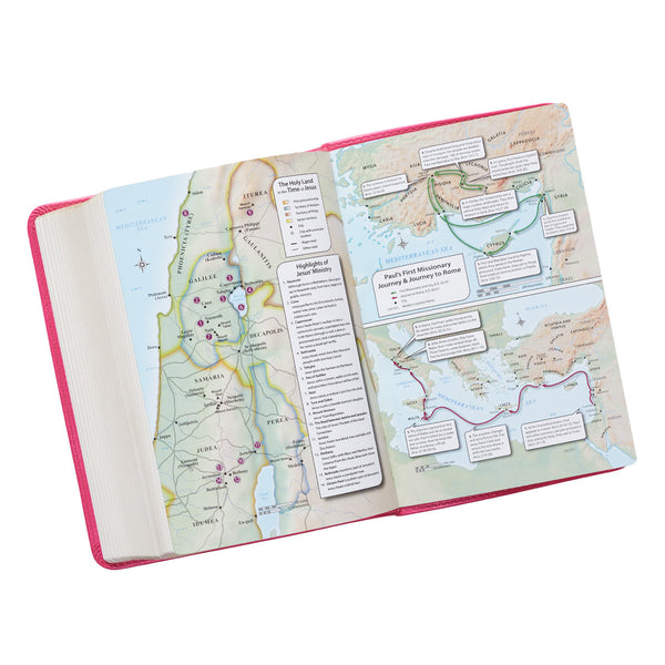 Pink Large Print Compact KJV Bible ~ Map Page View