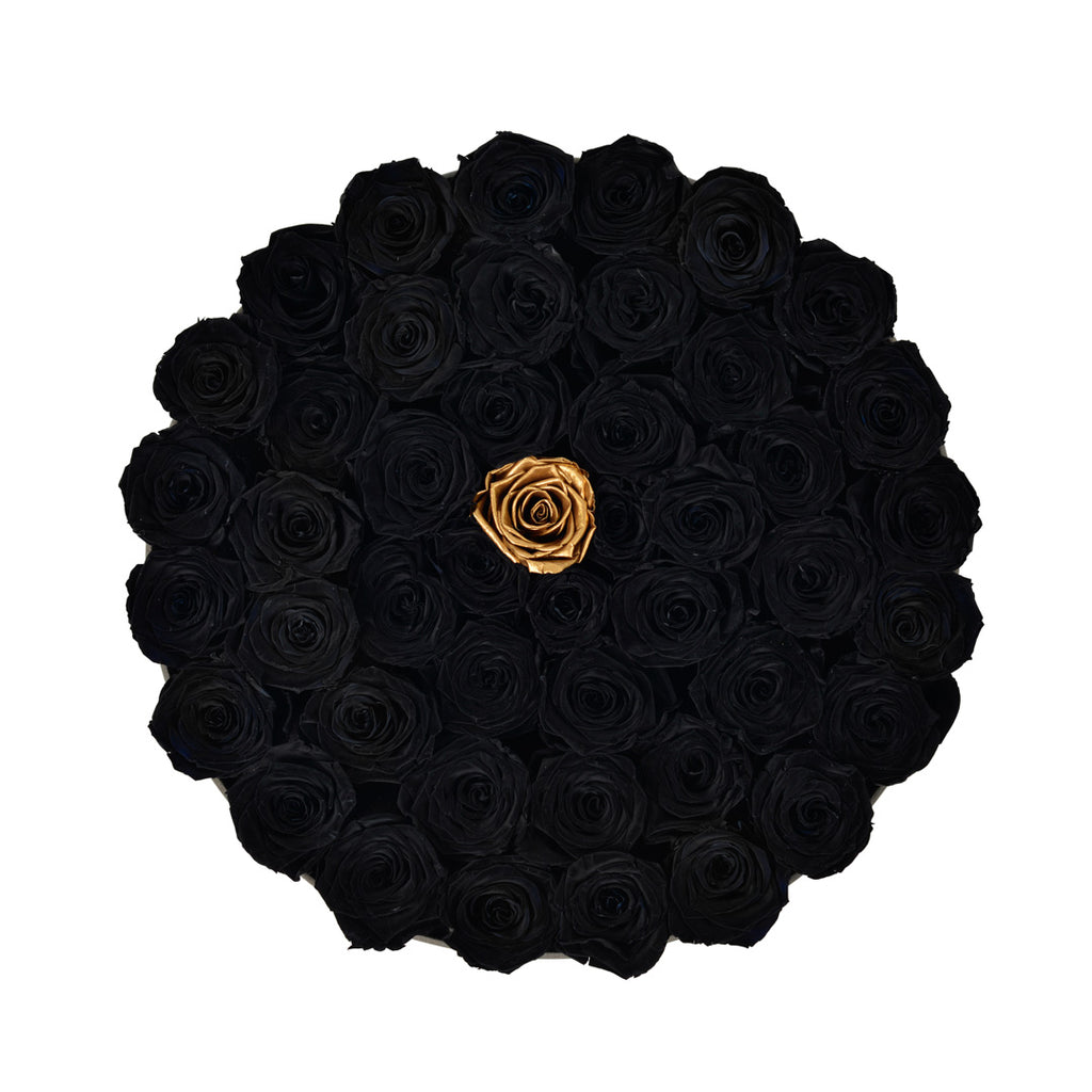 luxury black roses in a box