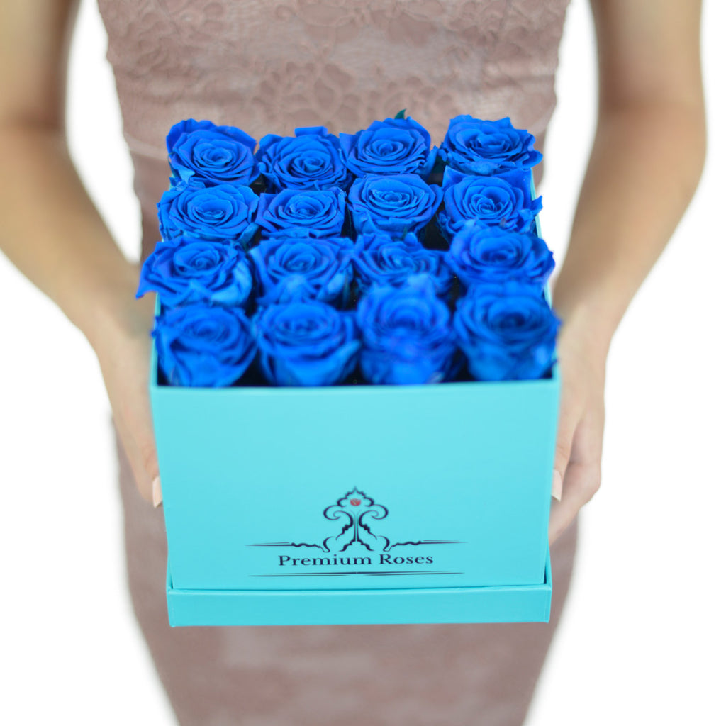 Blue Boxes (Small & Medium)