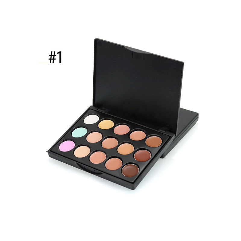 Got It Covered 15 Color Concealer Palette