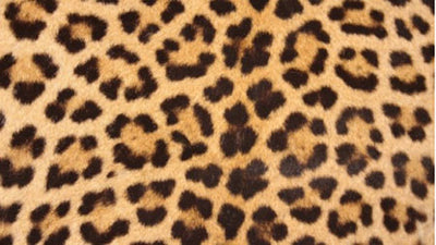 The Basic Animal Prints Used in Wholesale Clothing