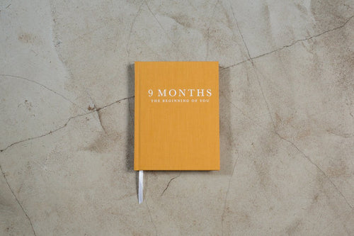 9 Months - Beginning Of You Journal - Write To Me