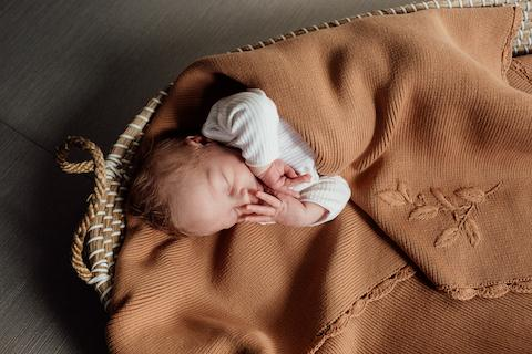 Heirloom Embroidered Blanket | Clay
