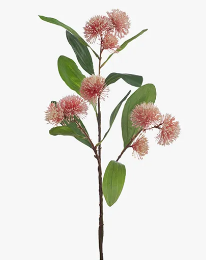 Sweet Gum Blossom - Pink