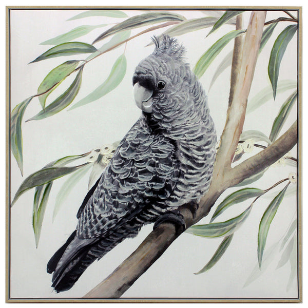 Black Cockatoo | Framed Art | 83x83cm