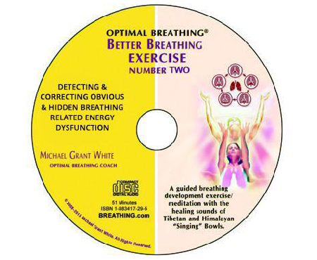 Detecting & Correcting Obvious & Hidden Breathing Related Energy Dysfunction (Download) - Breathing.com
