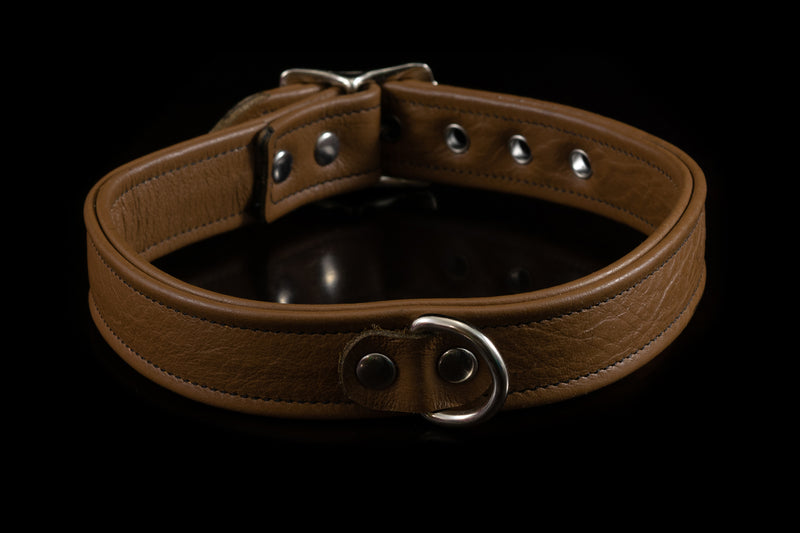 4434 Prismatic Leather Collar