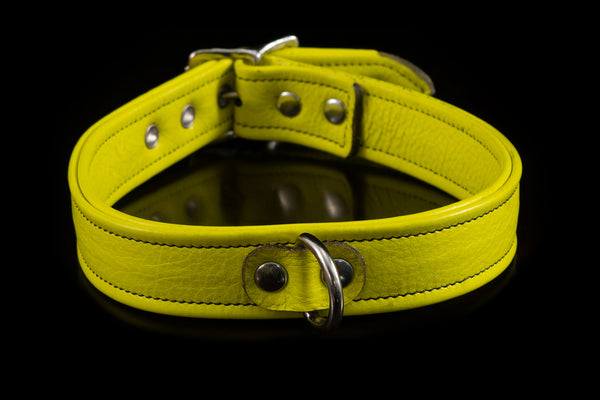 4430 Prismatic Leather Collar