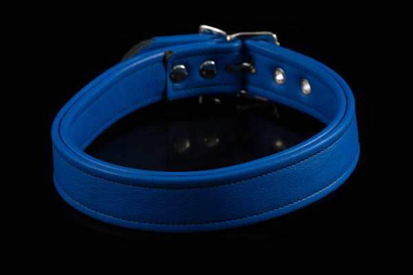 4432 Prismatic Leather Collar