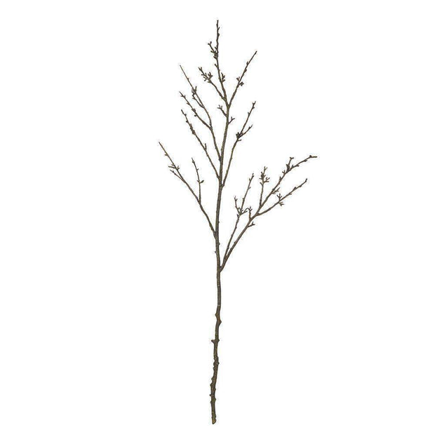 Blackthorn Branch | Decorator Accents | The Design Store NZ