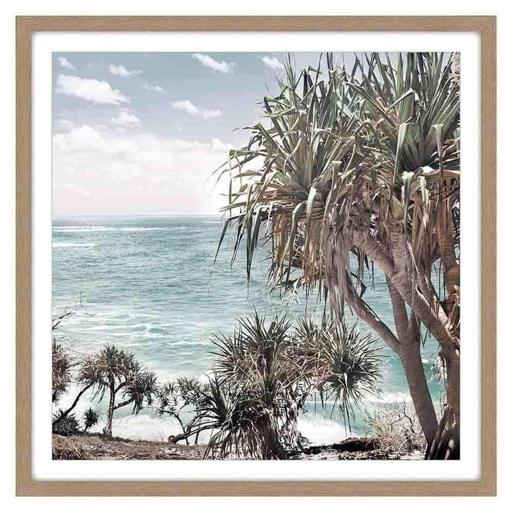 Framed Art Cabbage Tree - The Design Store NZ