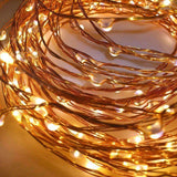 Warm White Plugin LED String Lights | Lighting | The Design Store NZ