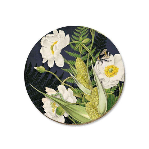 Mt Cook Lily On Black Coaster | Coasters | The Design Store NZ