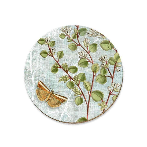 Botanica Muehlenbeckia Coaster | Coasters | The Design Store NZ