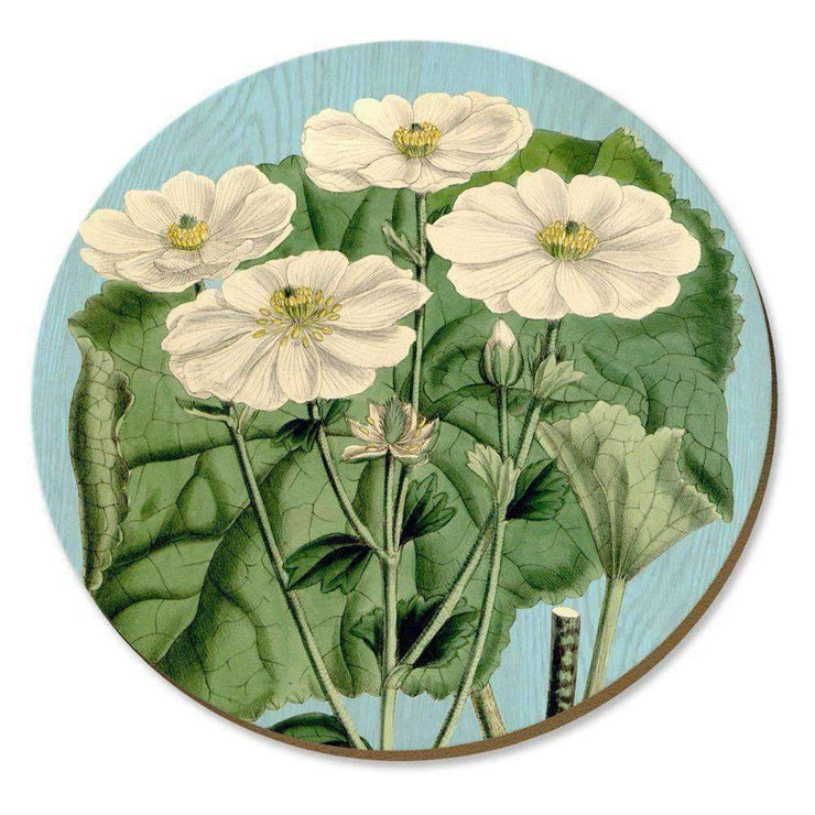 Mt Cook Lily Placemat | Tableware | The Design Store NZ