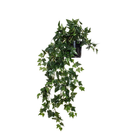 English Ivy-Garden Pot | Faux Flowers and Plants | The Design Store NZ