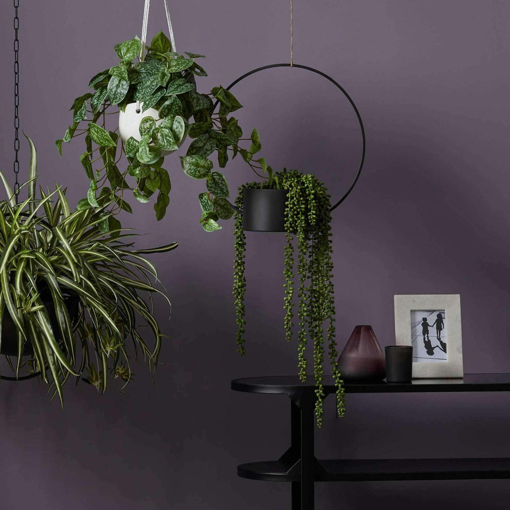 Hanging Pearls | Faux Flowers and Plants | The Design Store NZ