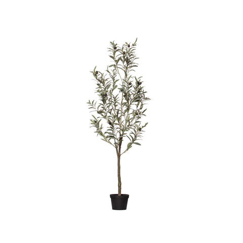 Olive Tree | Faux Flowers and Plants | The Design Store NZ
