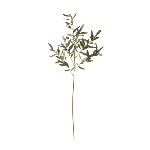 Olive Stem | Faux Flowers and Plants | The Design Store NZ