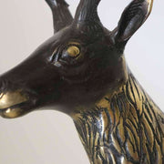 Bronze Stag - The Design Store NZ