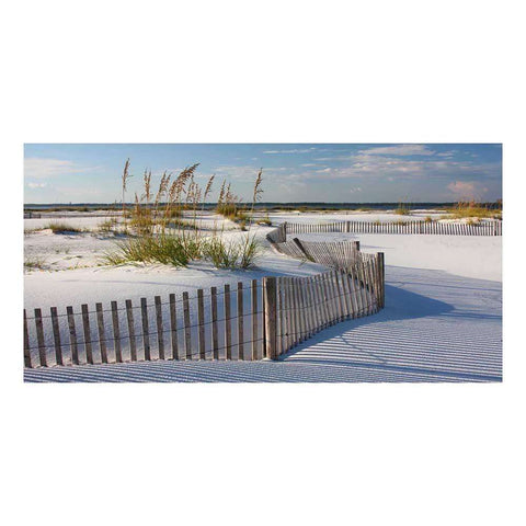 Glass Art Sand Dune Fence | Wall Art | The Design Store NZ