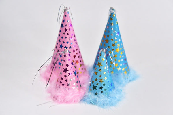 Party Hats by Charming Pet
