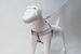 Harnesses - Dog Harness -  Harness | LuxyPaws Pet Boutique