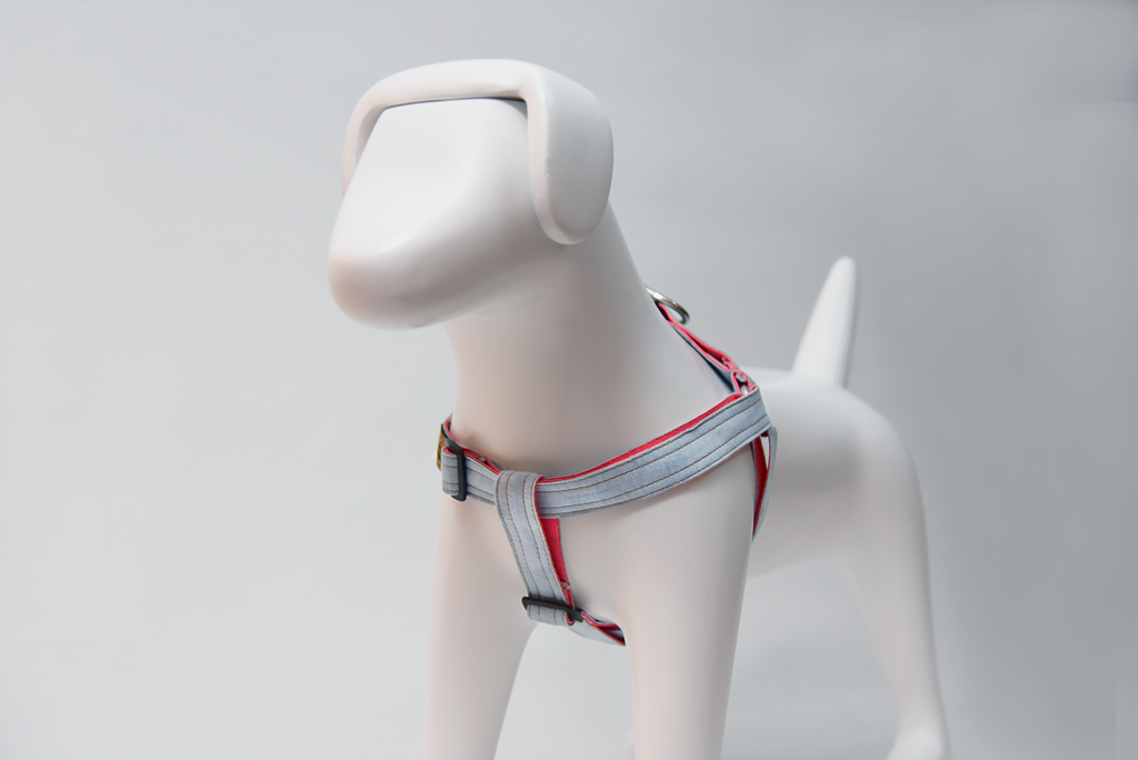 Our Dog Harnesses provide the best support and comfort for your pet. but not only that, look classy with all the exclusive designs only available at LuxyPaws.