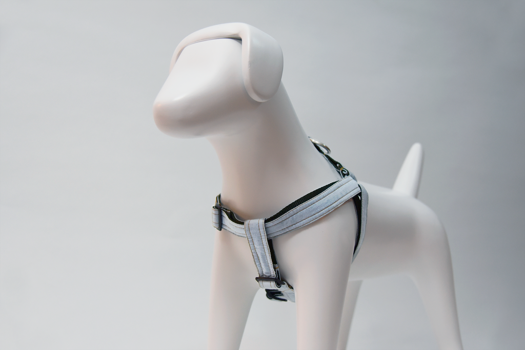 Harnesses - Dog Harness -  Sky Blue Classy Harness by Pinzael | LuxyPaws Pet Boutique