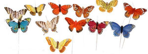 10cm Butterfly w/ Wire 12 Assorted Colors (12 Butterflies) MW956199