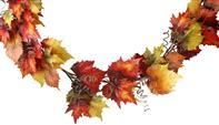 5'L GRAPE/MAPLE LEAF/CURL GARLAND