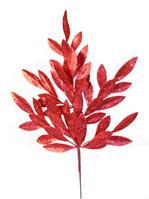 "23.5"" BAY LEAF SPRAY Red QTY 4 XX088524"