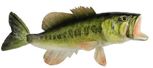 "15""L Largemouth Bass Natural MK2086 - DecoExchange"