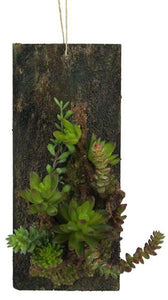 "12""H X 5""W Succulent Wall Plaque Multi Green/Black/Cream FC2197 - DecoExchange"