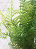20 IN PLASTIC FERN MIX BUSH 60961