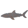 Gray Wood Shark