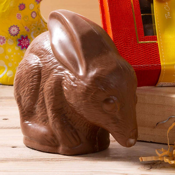 milk chocolate bilby novelty