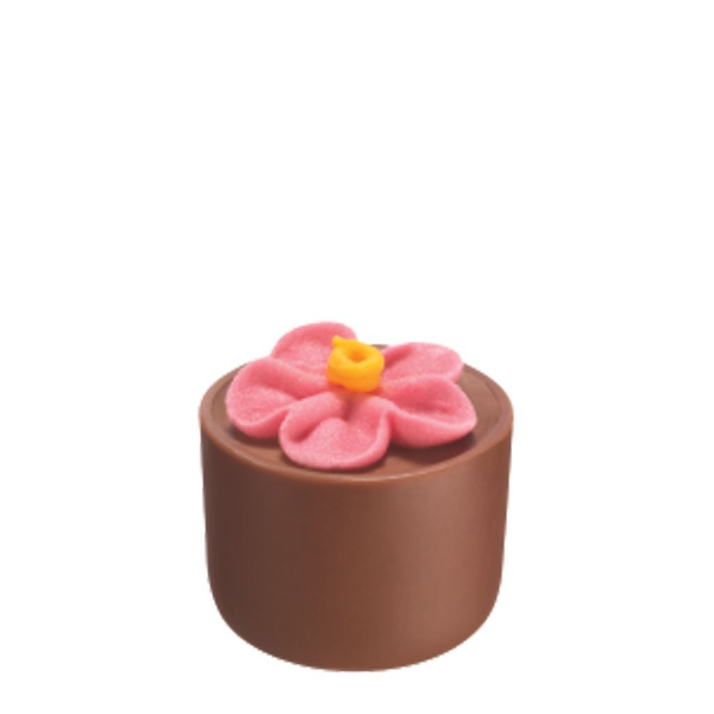 Gourmet Chocolate Flower Pot