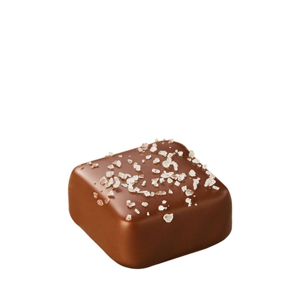 Gourmet Chocolate Salted Caramel