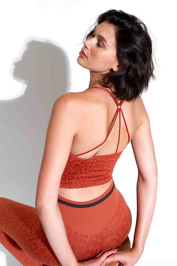 Leo Strappy Crop Bra in Red Clay