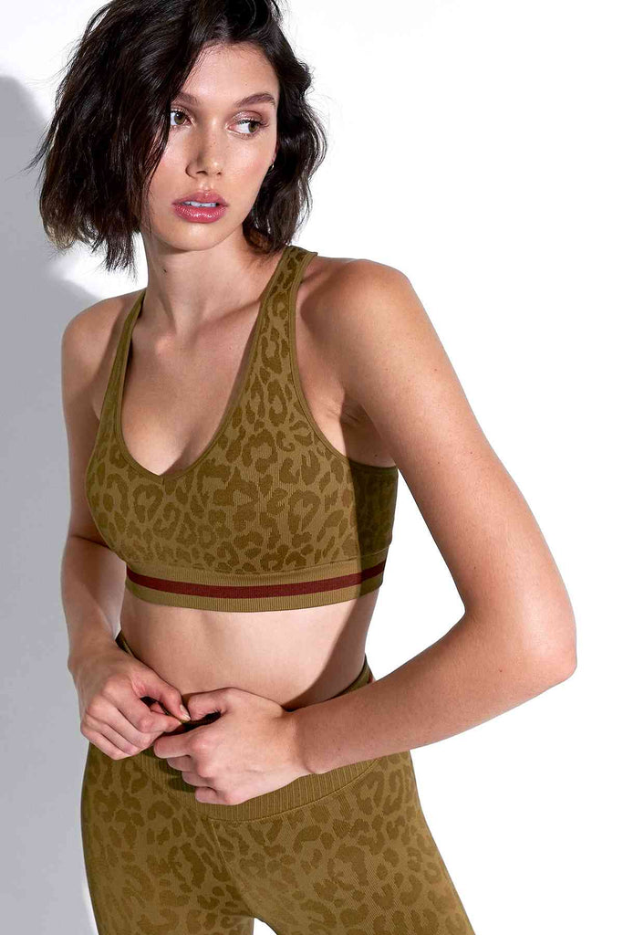 Leo Stripe Deep V Bra in Tapenade