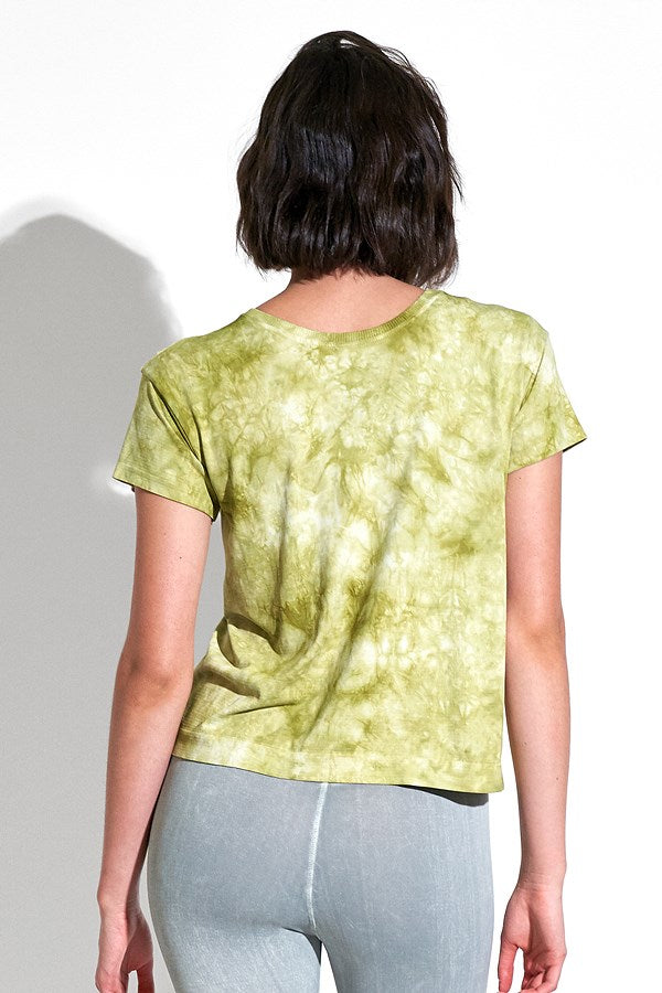 Rock Wash Favorite Tee in Moss Rock Wash