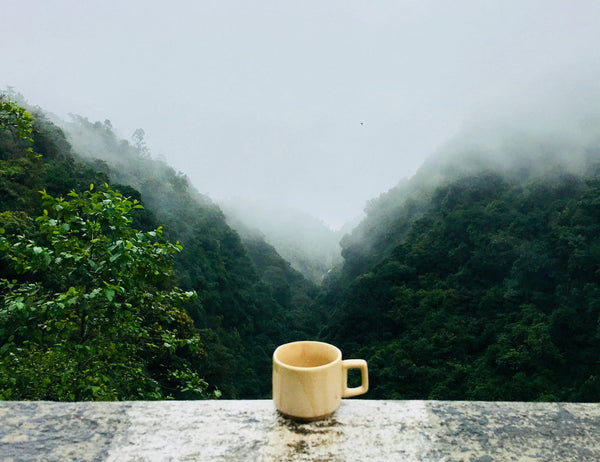 cup by landscape