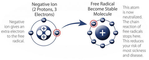 process by which a negative ion neutralizes a free radical