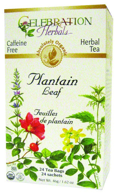 Dietary Supplement - Celebration Herbals Plantain Leaf Organic 24 BAG